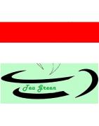 Té Verdes Origen Indonesia